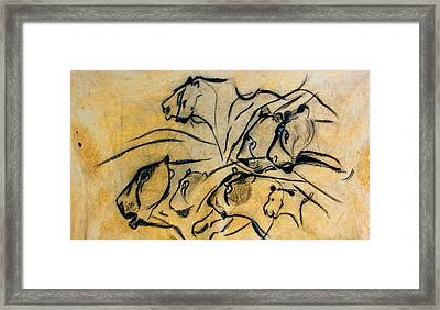 chauvet cave lions Clear Framed Print by Weston Westmoreland