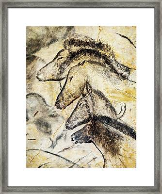 Chauvet Horses Framed Print by Weston Westmoreland