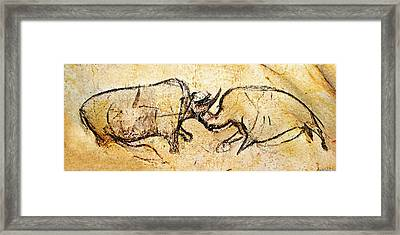 Chauvet Rhinoceros In Combat Framed Print