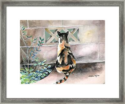 Checking Out The Neighbors Backyard Framed Print by Arline Wagner