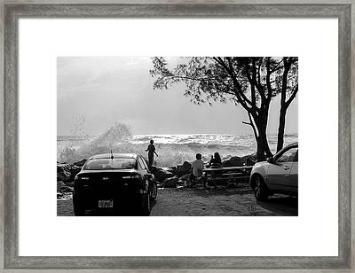 Checking Out The Waves Framed Print