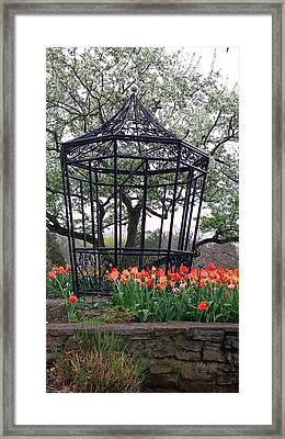 Cheekwood Gazebo  Framed Print by Gayle Miller