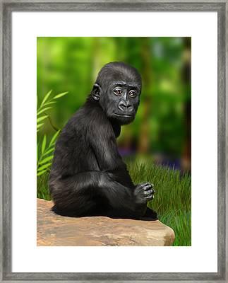 Cheeky Boy Framed Print by Julie L Hoddinott