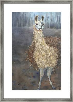 Cheeky The Llama Framed Print by Anne Havard