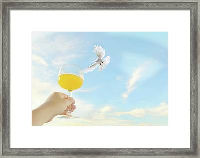 Peaceful Celebration Framed Print by Diana Angstadt