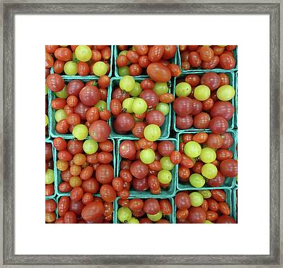 Cheery Cherry T's Framed Print