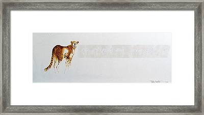 Cheetah And Zebras Framed Print