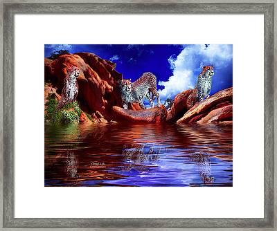 Cheetah Lake Framed Print by Carol Cavalaris