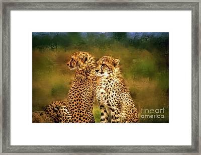 Cheetah Siblings Framed Print