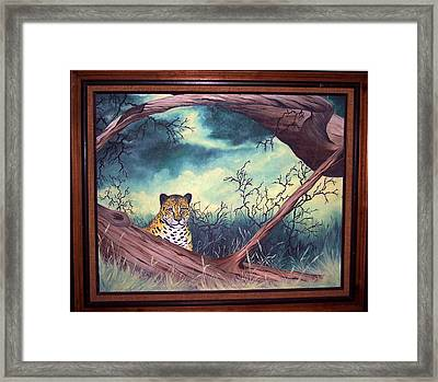 Cheetah Stare- Oil Done At 12 Years Old Framed Print by Carol Cavalaris