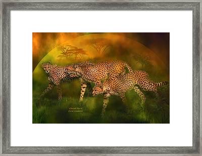 Cheetah World Framed Print