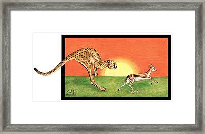 Cheetahroo On The Hunt Framed Print
