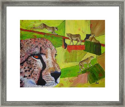 Cheetahs At Play Framed Print