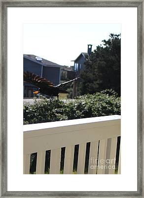 Framed Print featuring the photograph Cheeto Bandido by Marie Neder