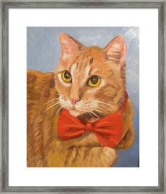 Cheetoh Cat Portrait Framed Print by Alice Leggett