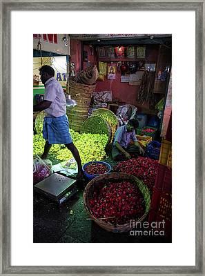 Chennai Flower Market Busy Morning Framed Print