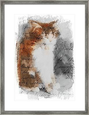 Cher Chat ... Framed Print