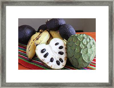 Cherimoya Fruit With Bananas And Avocados Framed Print by Janet Millard