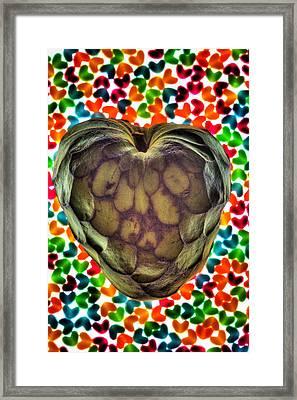 Cherimoya Heart Framed Print