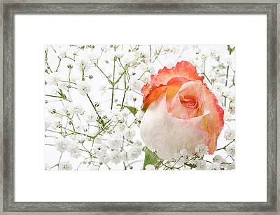 Cherish Framed Print by Andee Design