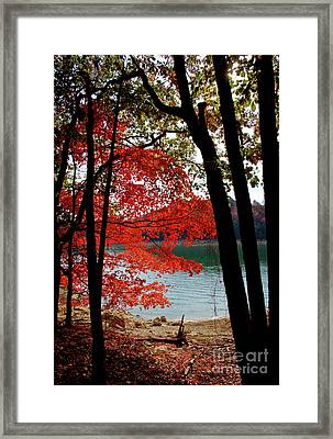 Framed Print featuring the photograph Cherokee Lake Color by Douglas Stucky
