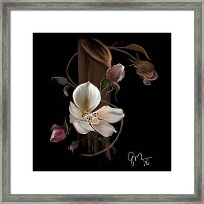 Cherokee Rose Framed Print