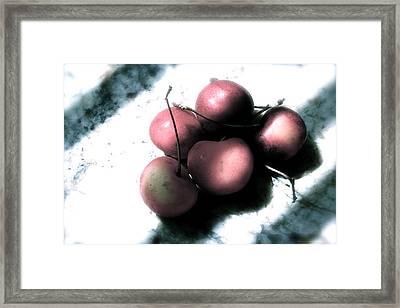 Cherries In The Light Framed Print by Sherry Klander