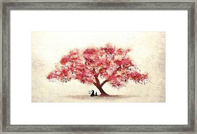 Cherry Blossom And Panda Framed Print