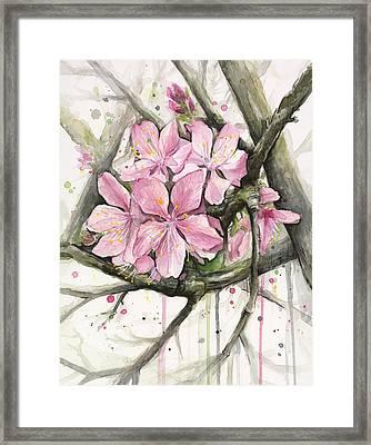 Cherry Blossom Framed Print by Olga Shvartsur
