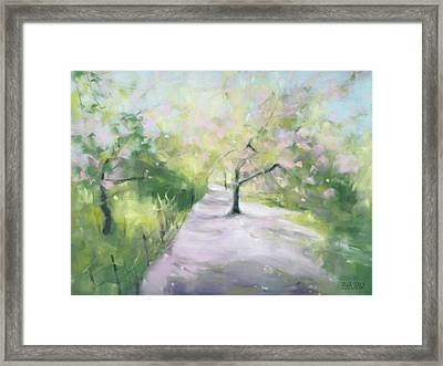 Cherry Blossom Tree Central Park Bridle Path Framed Print by Beverly Brown