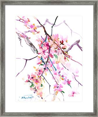 Cherry Blossom, Washington Dc Framed Print by Suren Nersisyan