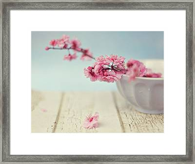 Cherry Blossoms In Bowl Framed Print by Hayley Johnson Photography