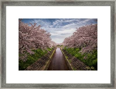 Framed Print featuring the photograph Cherry Blossoms In Nara by Rikk Flohr