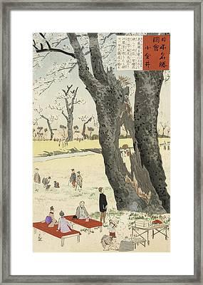 Cherry Blossoms Framed Print by Kobayashi Kiyochika