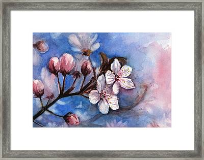 Cherry Blossoms  Framed Print by Olga Shvartsur