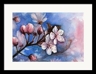 Flower Branch Framed Prints
