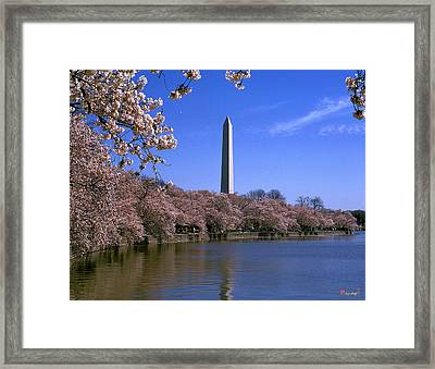 Cherry Blossoms On The Tidal Basin 15j Framed Print by Gerry Gantt