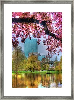 Framed Print featuring the photograph Cherry Blossoms Over Boston by Joann Vitali