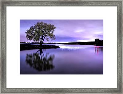 Cherry Creek Night Framed Print by Dave Crowl