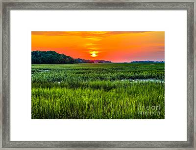 Cherry Grove Marsh Sunrise Framed Print
