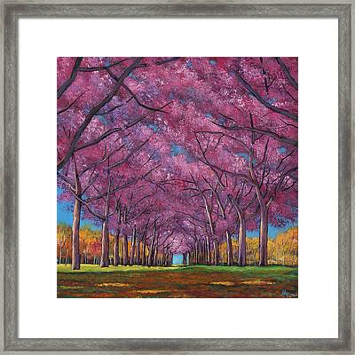 Cherry Lane Framed Print