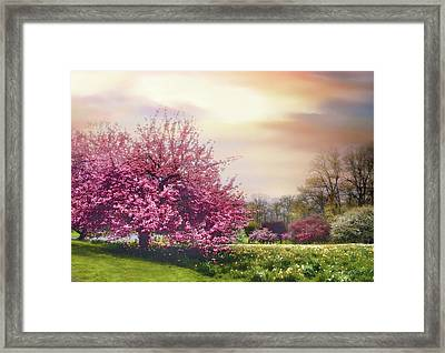 Framed Print featuring the photograph Cherry Orchard Hill by Jessica Jenney