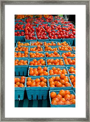 Cherry Tomatoes Framed Print by Jennifer Booher