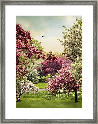 Crabapple Tree Grove Framed Print by Jessica Jenney