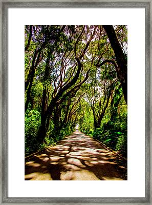 Cherry Tree Hill Framed Print