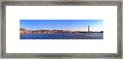 Cherry Trees On The Tidal Basin And Washington Monument  Framed Print by Olivier Le Queinec