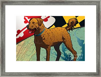 Chesapeake Bay Retriever Of Maryland  Framed Print