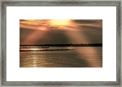 Chesapeake Gold Framed Print