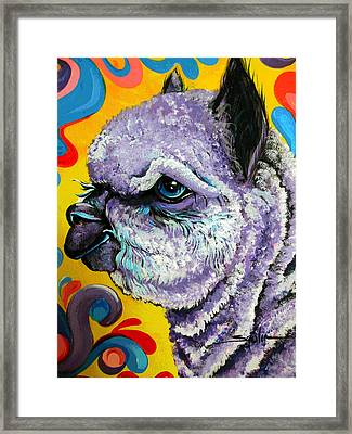 Framed Print featuring the painting Cheshire Alpaca  by Patty Sjolin