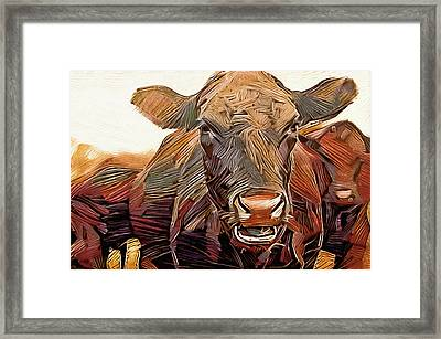 Chester County Cattle Framed Print